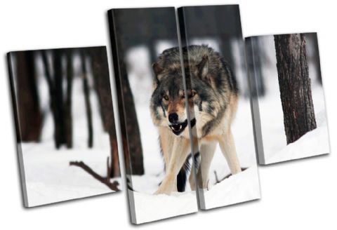 White Wolf Wild Animals - 13-0980(00B)-MP17-LO